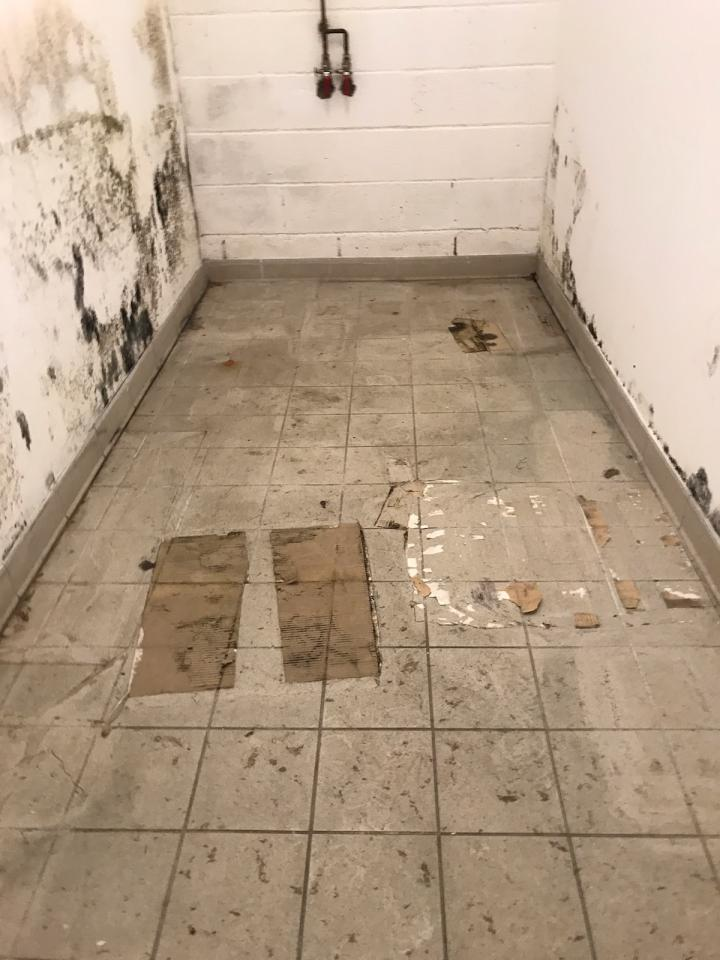 CLEAN ET CLAIR 4